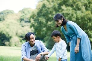 緑の中で遊ぶ家族の写真素材 [FYI01801833]