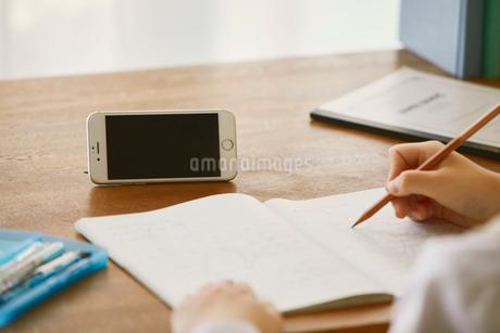スマートフォンを見ながら勉強する女子学生の写真素材 [FYI01801853]
