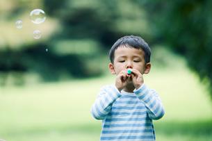 緑の中で遊ぶ家族の写真素材 [FYI01801907]