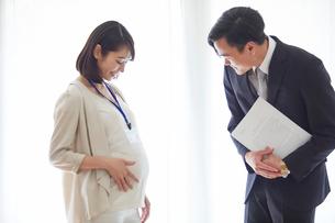 仕事をする妊婦女性と男性の写真素材 [FYI01801950]