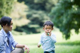 緑の中で遊ぶ家族の写真素材 [FYI01801995]