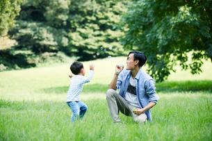 緑の中で遊ぶ家族の写真素材 [FYI01802125]