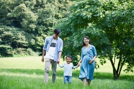 緑の中で微笑む家族の写真素材 [FYI01802174]