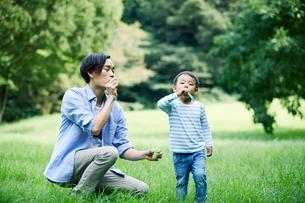 緑の中で遊ぶ家族の写真素材 [FYI01802371]