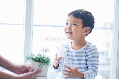 植物に水をあげる男の子と女性の写真素材 [FYI01802463]
