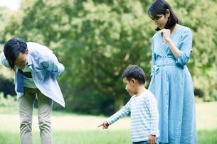 緑の中で遊ぶ家族の写真素材 [FYI01802482]