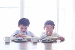 食事をする男の子の写真素材 [FYI01802920]