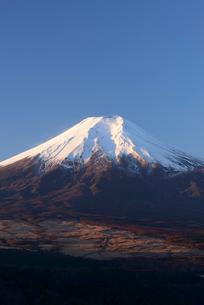 忍野村より望む冬の富士山の写真素材 [FYI01803022]