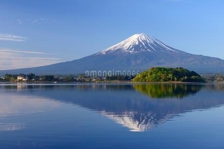 河口湖 大石公園より望む初夏の富士山と青空の写真素材 [FYI01803051]
