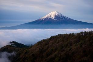 三ツ峠山より望む雲海と朝日を浴びる富士山の写真素材 [FYI01803066]