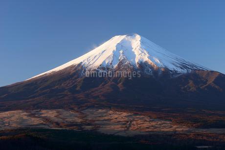 忍野村より望む冬の富士山の写真素材 [FYI01803075]