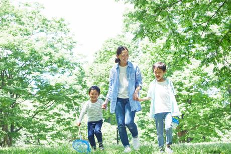 屋外で遊ぶ親子の写真素材 [FYI01803114]