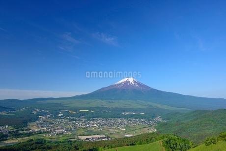 高座山より望む初夏の富士山の写真素材 [FYI01803193]