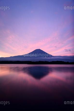 田貫湖より望む朝焼けの空と富士山の写真素材 [FYI01803286]