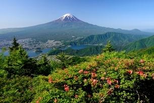 初夏の新道峠より望むツツジと富士山の写真素材 [FYI01803307]