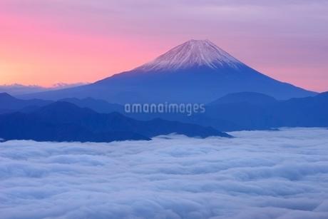 雲海と朝焼けに染まる富士山の写真素材 [FYI01803358]