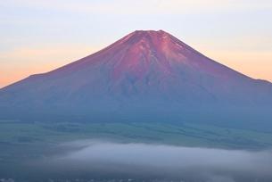 忍野村より望む赤富士と雲海の写真素材 [FYI01803380]