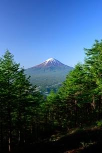 新道峠より望む木々と富士山の写真素材 [FYI01803402]