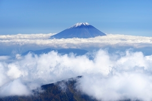 南アルプス・荒川中岳より望む富士山と雲海の写真素材 [FYI01803413]