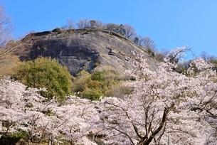 山梨県 岩殿山と桜 岩殿山丸山公園よりの写真素材 [FYI01803442]