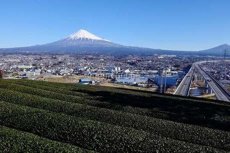 勘助坂より望む富士山と新東名高速道路と茶畑の写真素材 [FYI01803452]