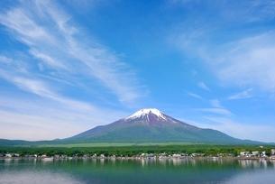 初夏の山中湖より望む富士山の写真素材 [FYI01803461]