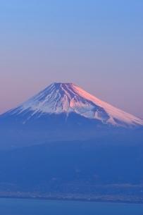 静岡県 富士山 だるま山高原レストハウスよりの写真素材 [FYI01803486]