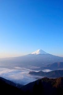 山梨県 夜明けの富士山と雲海 新道峠よりの写真素材 [FYI01803559]