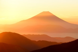 小河内岳より望む夜明けの富士山の写真素材 [FYI01803578]