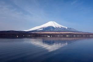 山中湖・ママの森付近より望む富士山と逆さ富士の写真素材 [FYI01803594]