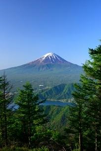 山梨県 初夏の富士山 新道峠よりの写真素材 [FYI01803645]