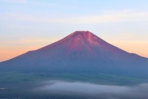 忍野村より望む赤富士と雲海の写真素材 [FYI01803662]