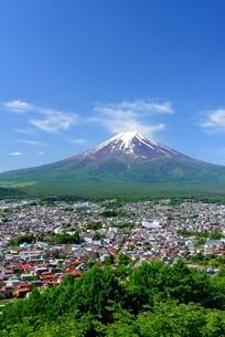 初夏の新倉山浅間公園より望む富士山の写真素材 [FYI01803671]