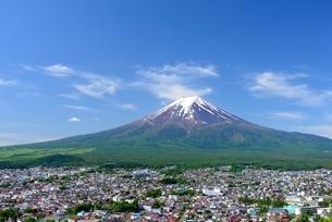 初夏の新倉山浅間公園より望む富士山の写真素材 [FYI01803679]
