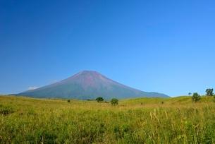 山梨県 赤富士と草原 梨ヶ原よりの写真素材 [FYI01803701]