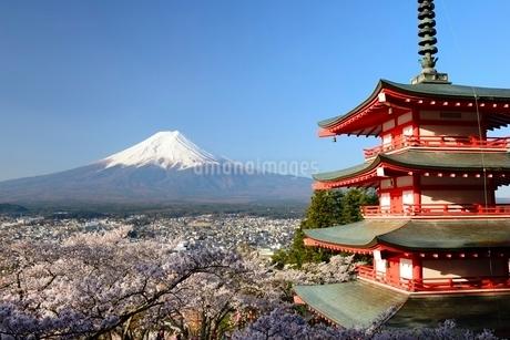 山梨県 新倉山浅間公園の桜と富士山と忠霊塔の写真素材 [FYI01803704]