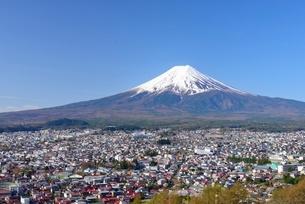 新倉山浅間公園より望む富士山の写真素材 [FYI01803706]
