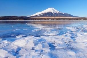 山梨県 結氷する山中湖と富士山の写真素材 [FYI01803784]