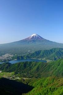 御坂稜線より望む富士山の写真素材 [FYI01803830]