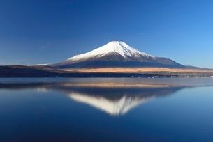 山中湖より望む富士山の写真素材 [FYI01803843]