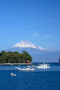 静岡県 戸田港より望む富士山の写真素材 [FYI01803855]