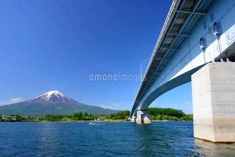 河口湖大橋と初夏の富士山の写真素材 [FYI01803885]