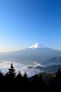 山梨県 夜明けの富士山と雲海 新道峠よりの写真素材 [FYI01803937]