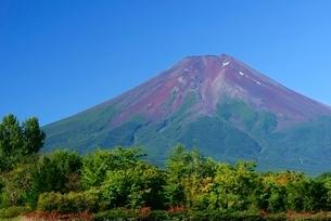 山梨県 夏の富士山 富士吉田市農村公園よりの写真素材 [FYI01803986]