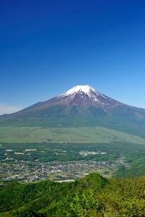 杓子山より望む初夏の富士山の写真素材 [FYI01804001]