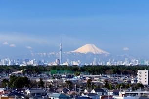 千葉県 富士山とスカイツリー遠望の写真素材 [FYI01804146]