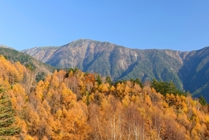 長野県 秋の鳥倉林道より望む小河内岳の写真素材 [FYI01804168]
