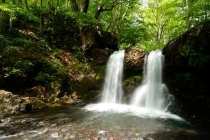 山梨県 新緑の鐘山の滝の写真素材 [FYI01804190]
