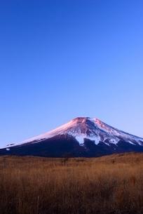 2017年元旦の富士山の写真素材 [FYI01804207]