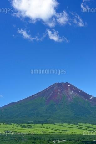山梨県 夏の富士山 忍野村よりの写真素材 [FYI01804234]
